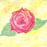 Rose, Aquarell