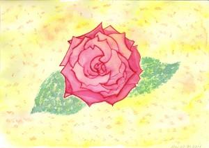Rose, Aquarell